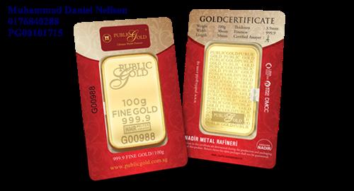 Public Gold LBMA Bullion Bar 100g (Au 999.9)